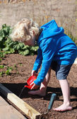 Blonde haired boy watering seeds — Fotografia Stock