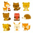 Super Cute Woodland Creatures Set — Stock Vector #71197593