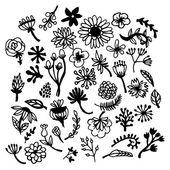 Hand Drawn Botanical Foliage — Stock Vector