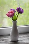 Tulipani in un vaso bianco — Foto Stock
