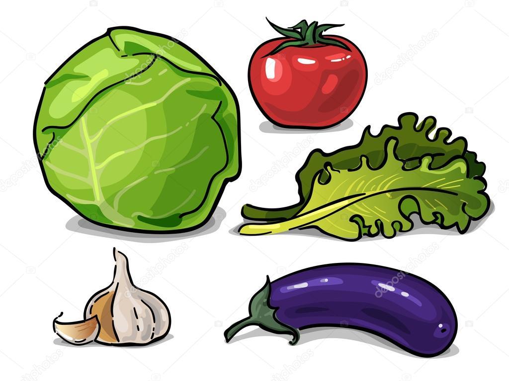 生菜, 番茄和大蒜蔬菜绘制的矢量图