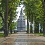 Постер, плакат: Prince Vladimir Monument in Kiev
