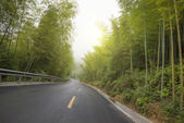 Woods road highway background — Stock Photo