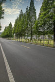 Highway road with wood trees — Stock Photo