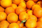 Pile of organic oranges at market stall — Stock Photo