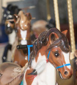 Caroussel horses outdoors in the sunshine — 图库照片