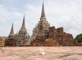 Blur Plumeria Foreground Historic Temple In World Heritage City, Ayuddhaya. — Stock Photo