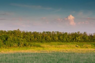 Sunset in the Don steppe — Stock Video