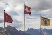 Flags on the Klausen Pass — Stock Photo