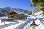 Winter idyll — Stock Photo