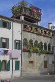 Street in Treviso — Stock Photo