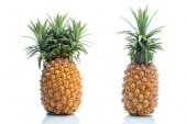 Genetic Modification, pineapple, fruit, modification, strange, s — Stock Photo