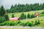 Traditional wooden mountain house on green field in summer — Stock Photo