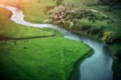 River in a beautiful green nature reserve. — Stock Photo