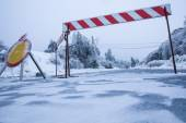 Road closed for ice with fallen trees in background — Stock Photo