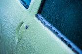 Donmuş araba kapısı — Stok fotoğraf