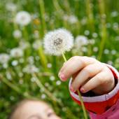 Girl lying in grass, surrounded by dandelion — Stock Photo
