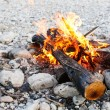 Self-made campfire on shore of mountain river — Stock Photo #78386648