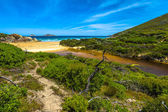 Wilsons Promontory National Park — Stock Photo