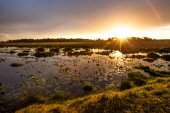 ISimangaliso Wetland Park — Stock Photo