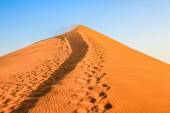 Desert Footprints — Stock Photo