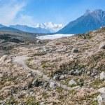 Kennicott Glacier Alaska — Stock Photo #78217636