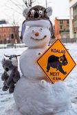 Snowman Koala — Stock Photo