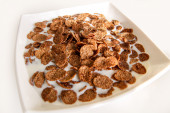 Chocolate cornflakes with milk in white square dish — Stock Photo