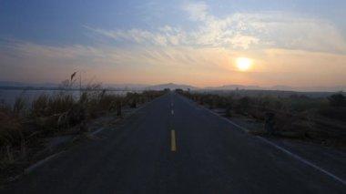 道路や草 — ストックビデオ