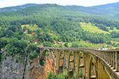 Bridge Over The Tara River In Montenegro — Stock Photo