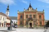 Statue J. J. Zmaj and neo-classical architecture of Vladicin Court Palace of Bishop in Novi Sad — Stock Photo