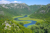 Crnojevica River In Skadar Lake National Park, Montenegro — Stock Photo