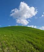 Green hill with white clouds  — Stock Photo