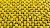 Peas corn background — Stock Photo