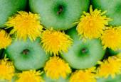 Green apple and dandelion — Stock Photo