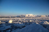 Arctic winter in south Spitsbergen — ストック写真