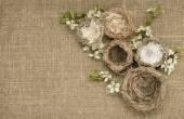 Bird nests on burlap background — Stock Photo