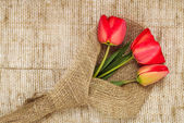 Bouquet of red tulips on burlap background — Stock Photo
