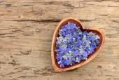 Wooden heart with flowers — Stock Photo