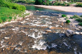 Rural river. — Stock Photo