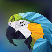 Polygon macaw parrot head — Stock Vector