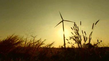 Windturbine met zonsondergang. — Stockvideo
