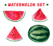 Vector watercolor hand drawn watermelon set. — Stockvektor