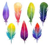 Vector watercolor feather set. — Stock Vector