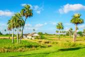 Tranquil rural landscape, small on Cuba — Stock Photo