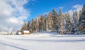 Prado sin caminos y refugio de montaña en invierno — Foto de Stock