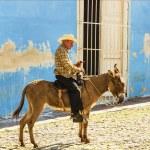 Old man sits on a donkey — Stock Photo #72834911