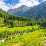 Постер, плакат: Beautiful alpine landscape