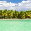 Palm trees over stunning lagoon — Stock Photo #72835695