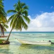 Exotic coast with moored fishing boat — Stock Photo #72836291